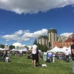 Veggifestival