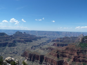 Blick in den Grand Canyon 1