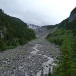 Tal des Nisqually River