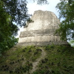 Tempel 6